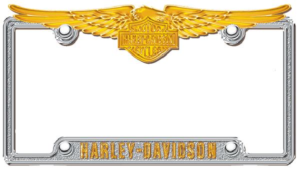 Harley Davidson Chrome Amp Gold Metal License Plate Frame